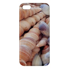 Sea Shells Apple Iphone 5 Premium Hardshell Case by yoursparklingshop