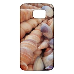 Sea Shells Samsung Galaxy S6 Hardshell Case