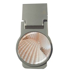 Sunny White Seashells Money Clip (round)