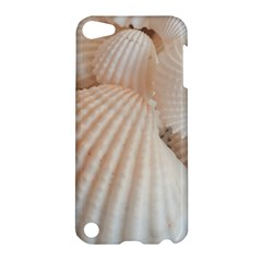 Sunny White Seashells Apple Ipod Touch 5 Hardshell Case