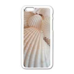 Sunny White Seashells Apple Iphone 6 White Enamel Case by yoursparklingshop