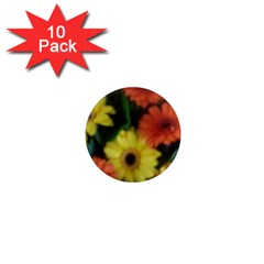 Orange Yellow Daisy Flowers Gerbera 1  Mini Button Magnet (10 Pack)