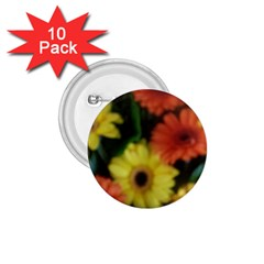 Orange Yellow Daisy Flowers Gerbera 1 75  Button (10 Pack)