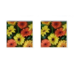Orange Yellow Daisy Flowers Gerbera Cufflinks (square)