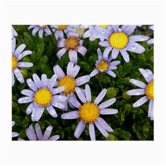 Yellow White Daisy Flowers Glasses Cloth (small) by yoursparklingshop
