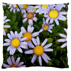 Yellow White Daisy Flowers Large Cushion Case (two Sided)  by yoursparklingshop