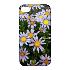 Yellow White Daisy Flowers Apple Iphone 4/4s Hardshell Case With Stand