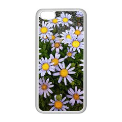 Yellow White Daisy Flowers Apple Iphone 5c Seamless Case (white)