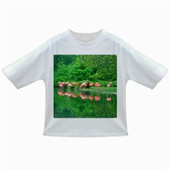 Flamingo Birds At Lake Baby T Shirt