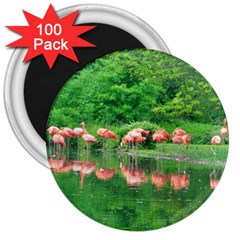 Flamingo Birds At Lake 3  Button Magnet (100 Pack) by yoursparklingshop