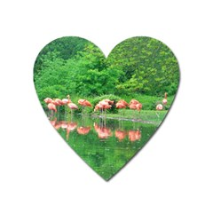 Flamingo Birds At Lake Magnet (heart)