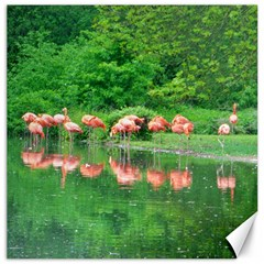Flamingo Birds At Lake Canvas 16  X 16  (unframed) by yoursparklingshop