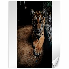 Photo  Canvas 18  X 24  (unframed) by things9things