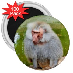 Grey Monkey Macaque 3  Button Magnet (100 Pack) by yoursparklingshop