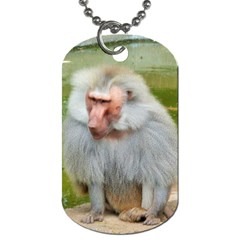 Grey Monkey Macaque Dog Tag (two Sided)