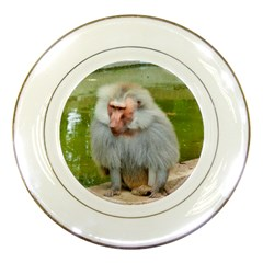 Grey Monkey Macaque Porcelain Display Plate by yoursparklingshop