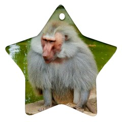 Grey Monkey Macaque Star Ornament (two Sides)