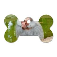 Grey Monkey Macaque Dog Tag Bone (two Sided)