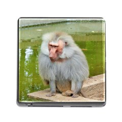 Grey Monkey Macaque Memory Card Reader With Storage (square)