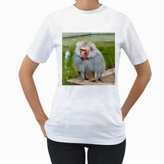 Grey Monkey Macaque Women s T Shirt (white)