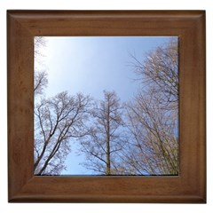 Large Trees In Sky Framed Ceramic Tile