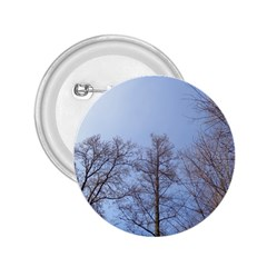 Large Trees In Sky 2 25  Button