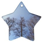 Large Trees in Sky Star Ornament Front