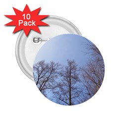 Large Trees In Sky 2 25  Button (10 Pack)