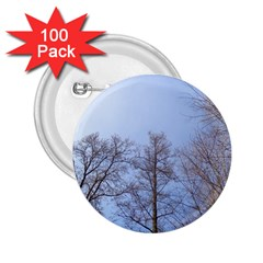 Large Trees In Sky 2 25  Button (100 Pack)
