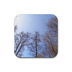 Large Trees In Sky Drink Coaster (square)