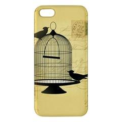 Victorian Birdcage Apple Iphone 5 Premium Hardshell Case by boho