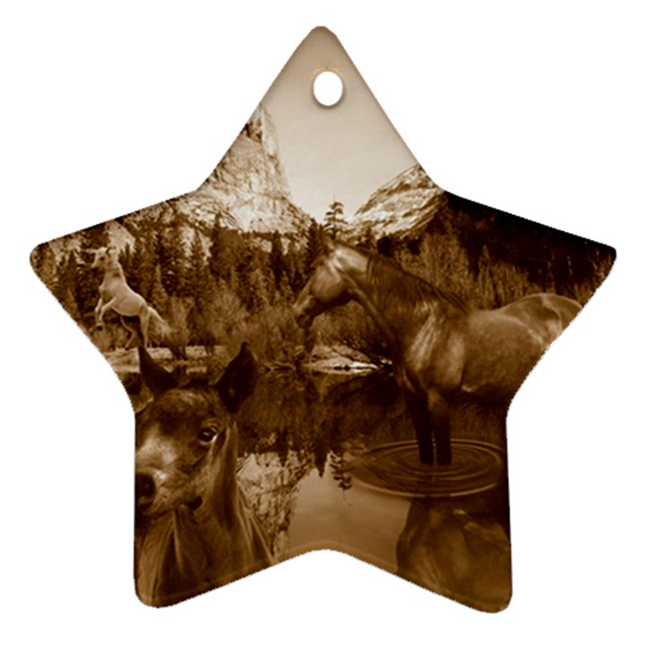 Native American Star Ornament (Two Sides)