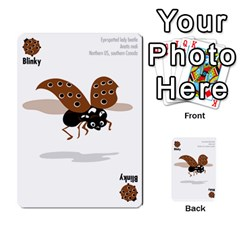 Ladybug Lunch, California Bugs   Deck 1 Of 2 By Marianne Waage   Multi Purpose Cards (rectangle)   V1zeet0ftawk   Www Artscow Com Front 47