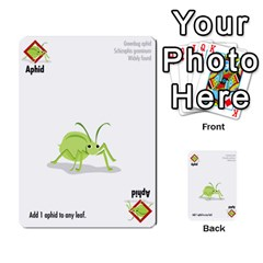 Ladybug Lunch, California Bugs   Deck 2 Of 2 By Marianne Waage   Multi Purpose Cards (rectangle)   Fxcg7bnwvb5b   Www Artscow Com Front 30
