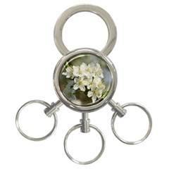 Spring Flowers 3 Ring Key Chain by anstey