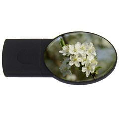 Spring Flowers 4gb Usb Flash Drive (oval) by anstey