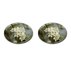 Spring Flowers Cufflinks (oval) by anstey