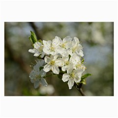 Spring Flowers Canvas 20  X 30  (unframed) by anstey