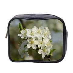 Spring Flowers Mini Travel Toiletry Bag (Two Sides) by anstey