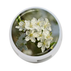 Spring Flowers 4 Port Usb Hub (one Side) by anstey