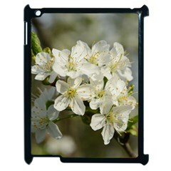 Spring Flowers Apple Ipad 2 Case (black) by anstey