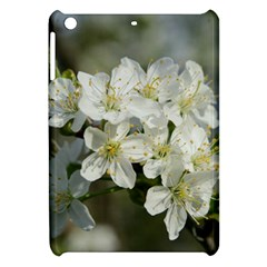 Spring Flowers Apple Ipad Mini Hardshell Case by anstey