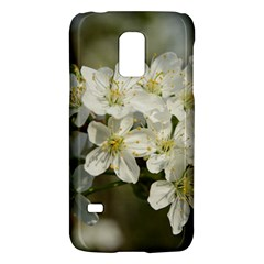 Spring Flowers Samsung Galaxy S5 Mini Hardshell Case  by anstey