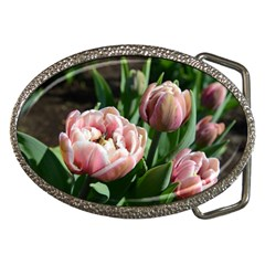 Tulips Belt Buckle (oval) by anstey