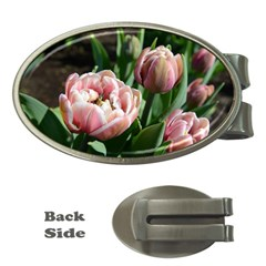Tulips Money Clip (oval) by anstey