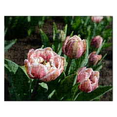 Tulips Jigsaw Puzzle (rectangle) by anstey