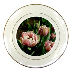 Tulips Porcelain Display Plate by anstey