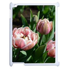 Tulips Apple Ipad 2 Case (white) by anstey