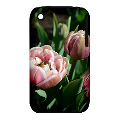 Tulips Apple Iphone 3g/3gs Hardshell Case (pc+silicone) by anstey