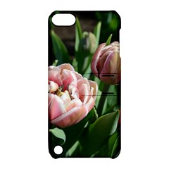 Tulips Apple Ipod Touch 5 Hardshell Case With Stand by anstey